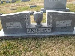 Joe N. Anthony