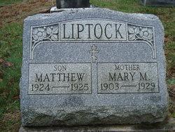 Mary M Liptock