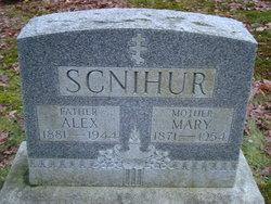 Alex Scnihur