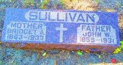 John William Sullivan