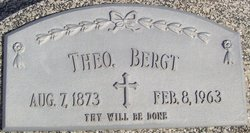 Theodore Bergt