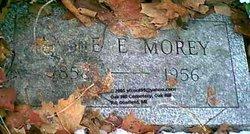 Annie E <I>Davis</I> Morey