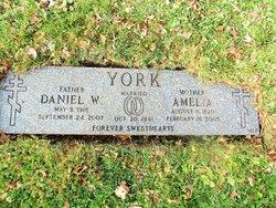 Amelia York