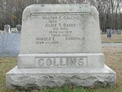 Walter Everett Collins