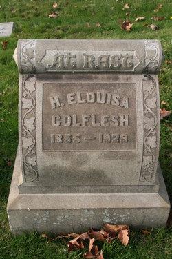 Henrietta Elouisa Colflesh