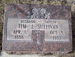 Tim J. Sullivan