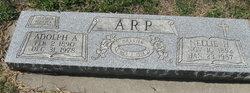 Adolph A Arp