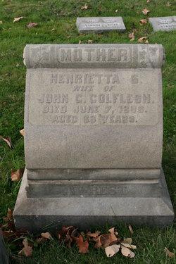 Henrietta Sophia <I>Holland</I> Colflesh