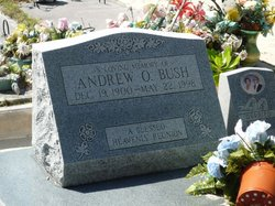 Andrew Oscar Bush