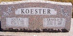 Anita C Koester