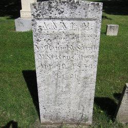 Anne M. Stevens