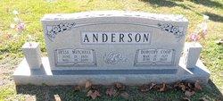 Jesse Mitchell Anderson