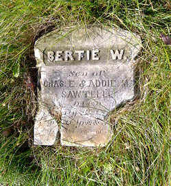 Bertie W. Sawtelle