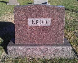Frank J. Krob