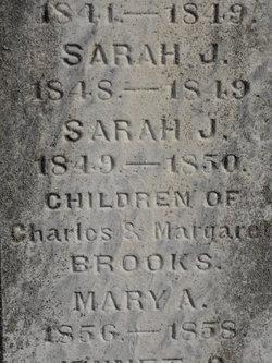 Sarah J Brooks
