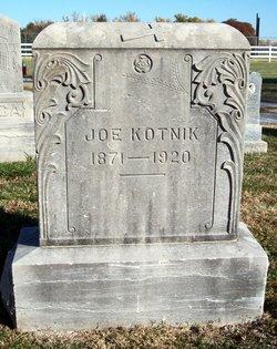 Joe Kotnik