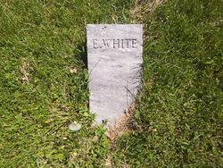 E. White