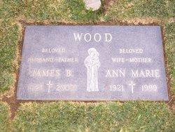 James B. Wood