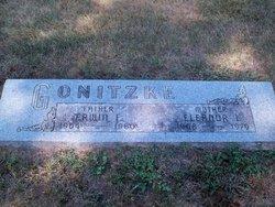 Erwin F. Gonitzke