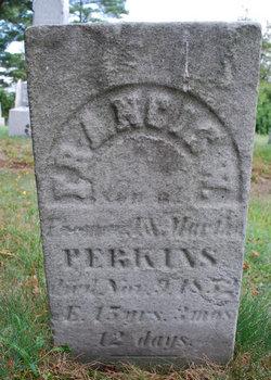 Francis W. Perkins