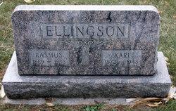 Kari Ellingson
