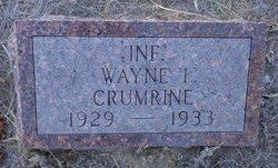 Wayne I Crumrine