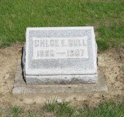Chloe E Dull