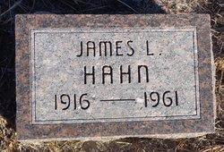 James L Hahn