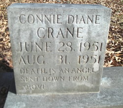Connie Diane Crane