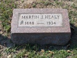 Martin J Healy