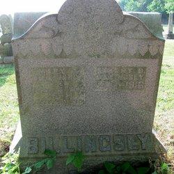 Mary J. <I>Brinegar</I> Billingsly