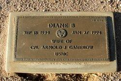 Diane B Gamerow
