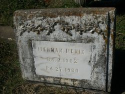 Herman Fenix, Jr