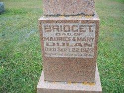 Bridget Dulan