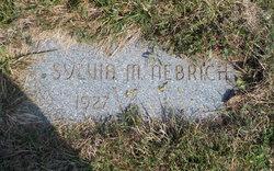 Sylvia M Nebrich