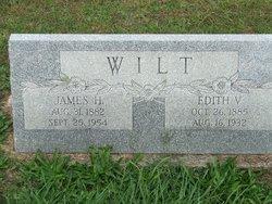 James Henry Wilt