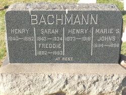 Sarah <I>Butler</I> Bachmann