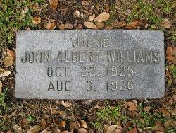 John Albert Williams