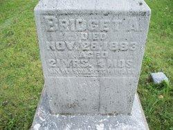 Bridget McKeown