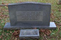Mary Ann <I>McLein</I> Hamilton