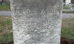 Agnes Elizabeth <I>Allen</I> Hill