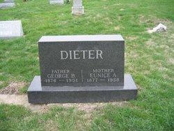 George B Dieter