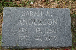 Sarah A Anderson