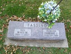 Dominic J Fassino