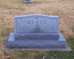 Samuel E Burns