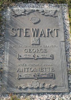 George Stewart