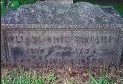 Charlotte <I>Hosmer</I> Stewart