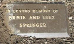 Inez <I>Cook</I> Springer