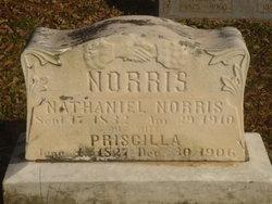Nathaniel Norris