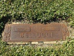 Patrick J Bellucci